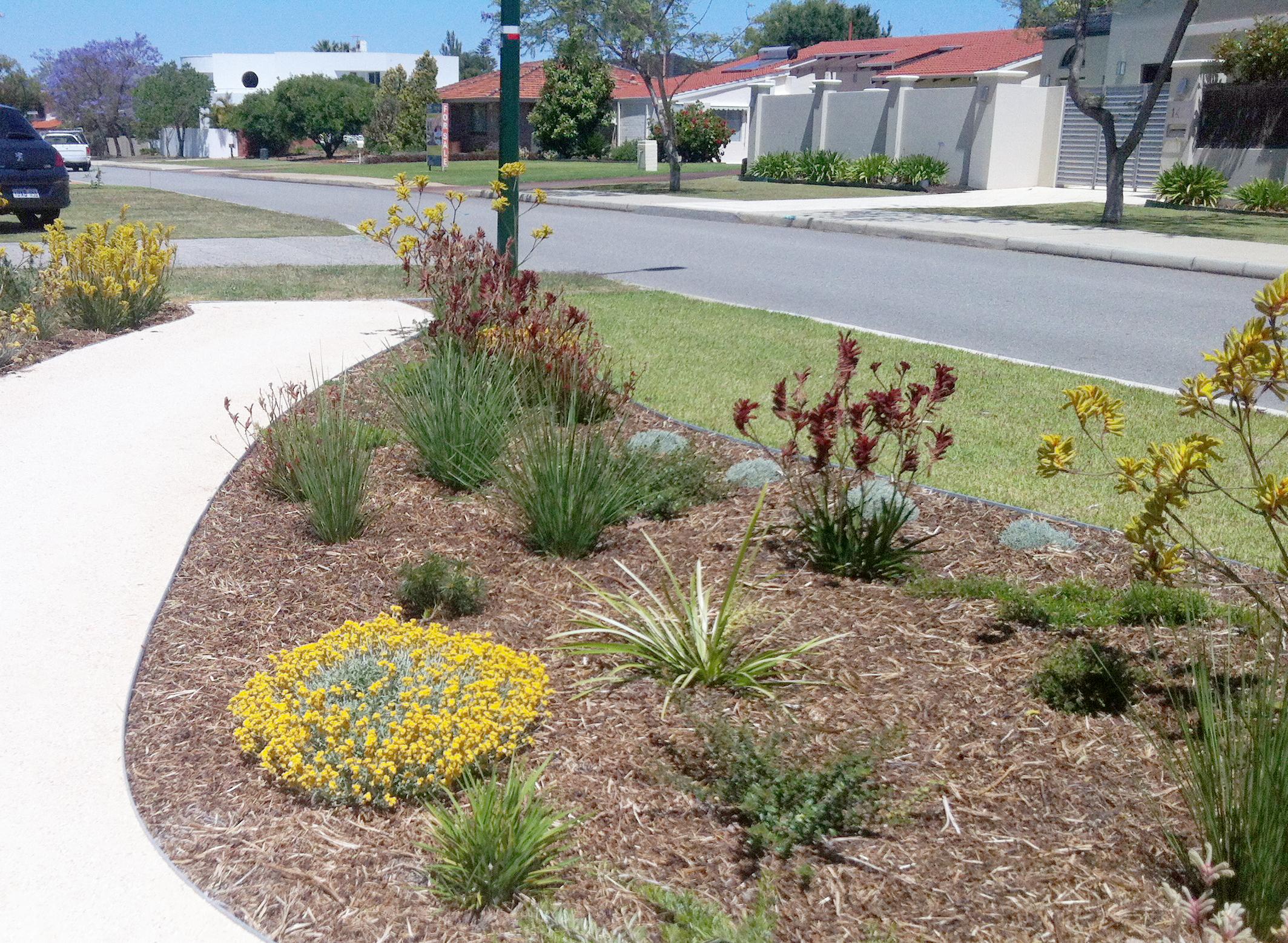 Native garden zona verde for Australian native garden design
